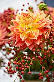 Dahlienblüte und Hagebutten