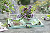 Kleine Dekoration aus Fliederblüten und Klettergurke in Tassen auf Holzuntersetzer
