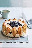 A madeleine Charlotte with blueberries