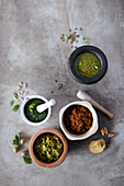 Basil pesto, peppermint parsley pesto, zucchini pesto and red pesto