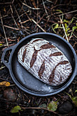 Bread in a cast iron pan