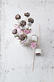 Marshmallows with chocolate, and sugar and flower decorations (wedding, birthday)