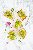 Crostini with green tomatoes, oregano and chive flowers