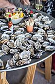 Frische Austern auf Metallplatte mit Tabasco und Zitrone