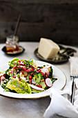 Salat mit Radieschen, Broccoli, Granatapfelkernen und Pecorino