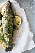Forelle mit Salz, Zitrone und Kräutern zum Backen vorbereiten