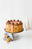 Speculoos chocolate cake for Christmas