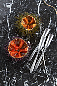 Sea urchins with roe