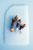 Three barnacles on ice