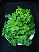 Fresh kale leaves in a bowl