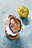 Frische Auster und Limette
