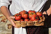 Tasty appetizing tomatoes with green stems in brown straw-plaited basket in hands