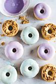 Purple and pastel-blue doughnuts