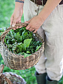 A woman holding a basket of fresh herbs