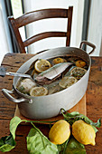 Mackarels in lemon broth with fennel (marinating fish)