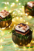 Chistmas S'mores with pine marshmallow