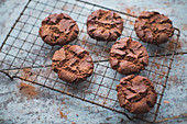 Chocolate cookies on a cooling grid