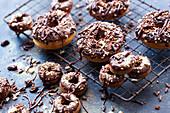 Chocolate-glazed doughnuts