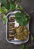 Pickled and stuffed vine leaves in aluminium foil