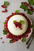 Panna cotta dome cake with redcurrants