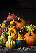 Various squash with autumnal decoration