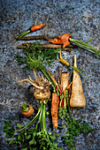 Freshly harvested roots and bulbs