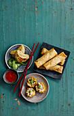 Various Dim Sum: Siu Mai, spring rolls and Wo Tiep Jiaozi