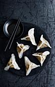 Mushroom Porchini Dumplings