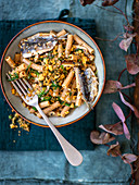 Wholemeal sedanini pasta with sardines, fennel seeds and breadcrumbs