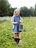 Mädchen hält Eimer mit Erdbeeren auf dem Feld