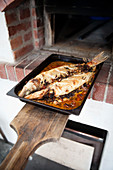 Baked fish in front of a brick oven