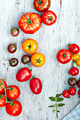 Verschiedene Tomaten
