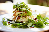 Halloumi with cucumber and herb salad