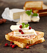 Toasted bread with cranberry butter and camembert