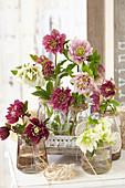 Gefüllte Christrosen-Blüten in Flaschen