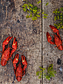 Crayfish on wooden background