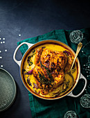 Creamy mustardbraised chicken