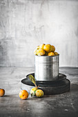 Mirabelle plums in a metal tin