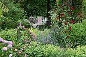 Lauschiger Sitzplatz im Garten, Beet mit Rosen, Kletterrose am Rankgitter, Frauenmantel, Katzenminze und Hortensie