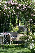 Sitzplatz mit Korbsessel am Rosenbogen mit Rose 'Kirschrose'