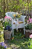 Korbsessel mit Frühlingsstrauß zwischen Kübeln mit Frühlingsbepflanzung am Gartenzaun