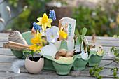 Kleine Deko in Eierkarton: Narzissen, Traubenhyazinthen und Hornveilchen in Eierschale als Vase