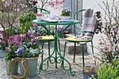 Kleine Sitzgruppe auf Terrasse mit Frühlingsblumen