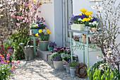 Frühlingsterrasse mit Tulpen, Narzissen und blühenden Stauden