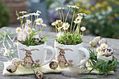 Gänseblümchen in Hasentassen, dekoriert mit Wachteleiern, Federn und Graskränzchen