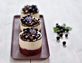 Vegan blackcurrant, chocolate and peanut mousse cake with chocolate sponge