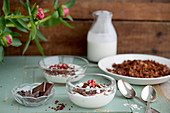 Granola with yoghurt and pomegranate seeds