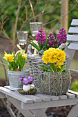 Osterdeko mit Narzissen, Hyazinthen, Primeln auf einem Gartenstuhl, kleiner Strauß aus Hornveilchen in Ei