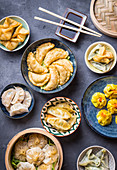 Assorted dim sum appetizers on rustic background