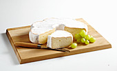 Saint Albray, soft cheese from France